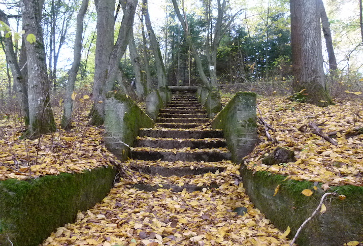 Eine mit Blättern bedeckte Treppe zu einem Denkmal aus dem Gut Waldfrieden