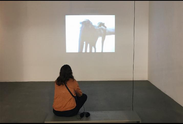 """In der Ausstellung """"The Influencing Machine, NGBK 2018."""