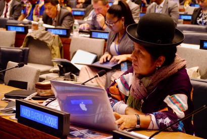 Maria Eugenia Choque Quispe, a member of the UN Permanent Forum on Indigenous Issues, speaks at the body's 2015 session